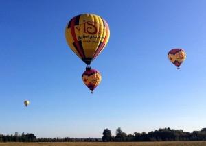 Vista balloons in flight